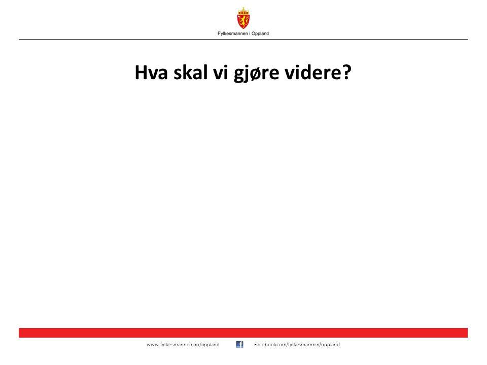 www.fylkesmannen.no/opplandFacebookcom/fylkesmannen/oppland Hva skal vi gjøre videre?