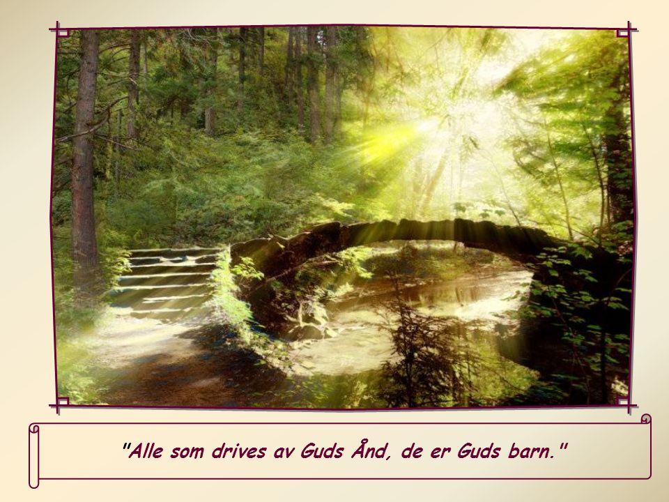 Slik vil man gi Den Hellige Ånd i våre hjerter en større frihet.