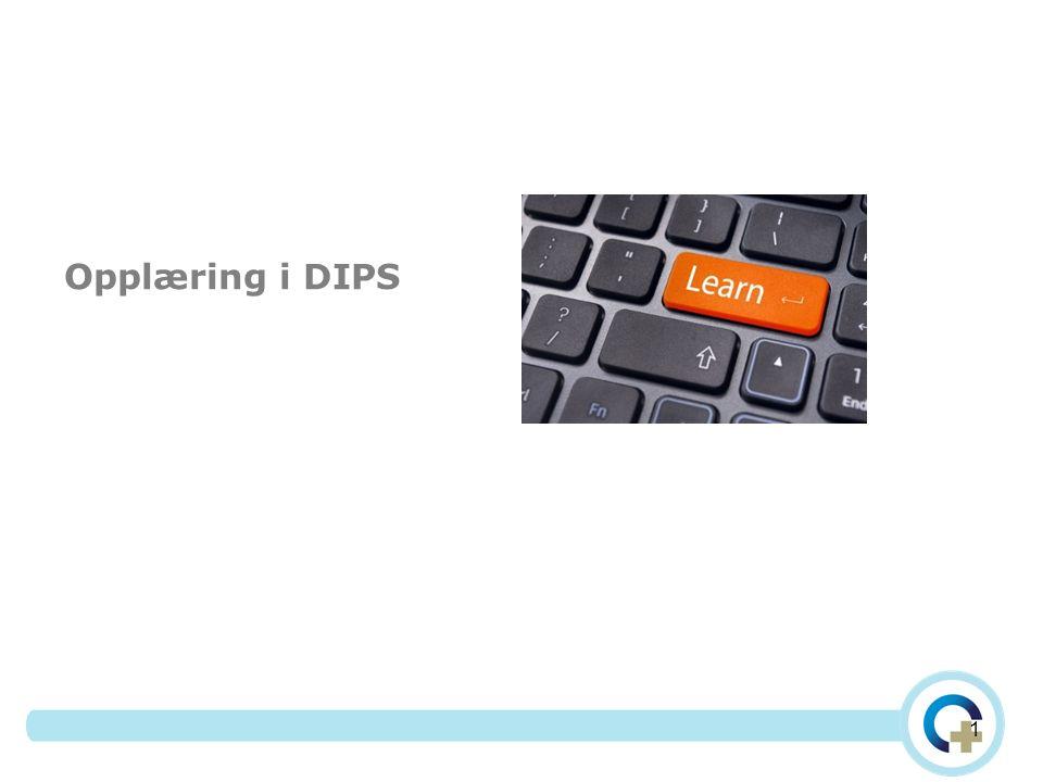 Opplæring i DIPS 1