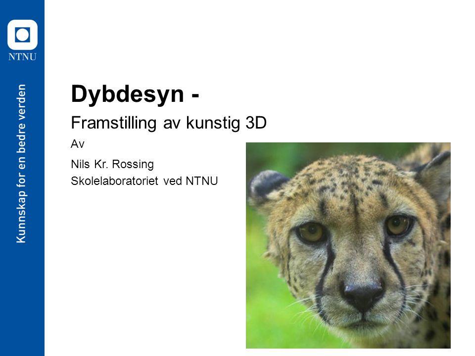 Dybdesyn - Framstilling av kunstig 3D Av Nils Kr. Rossing Skolelaboratoriet ved NTNU