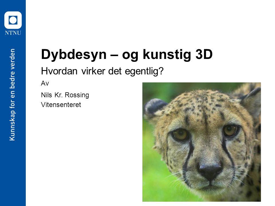 Dybdesyn – og kunstig 3D Hvordan virker det egentlig? Av Nils Kr. Rossing Vitensenteret