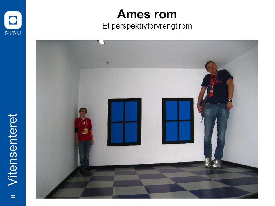 33 Vitensenteret Ames rom Et perspektivforvrengt rom