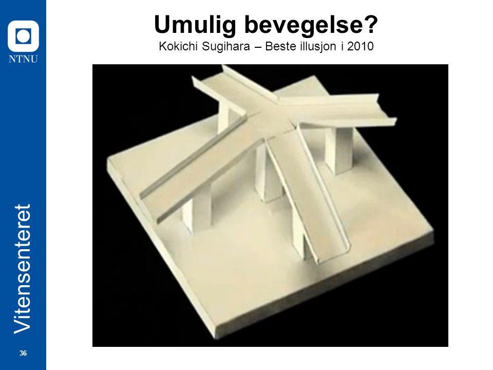 36 Vitensenteret Umulig bevegelse? Kokichi Sugihara – Beste illusjon i 2010