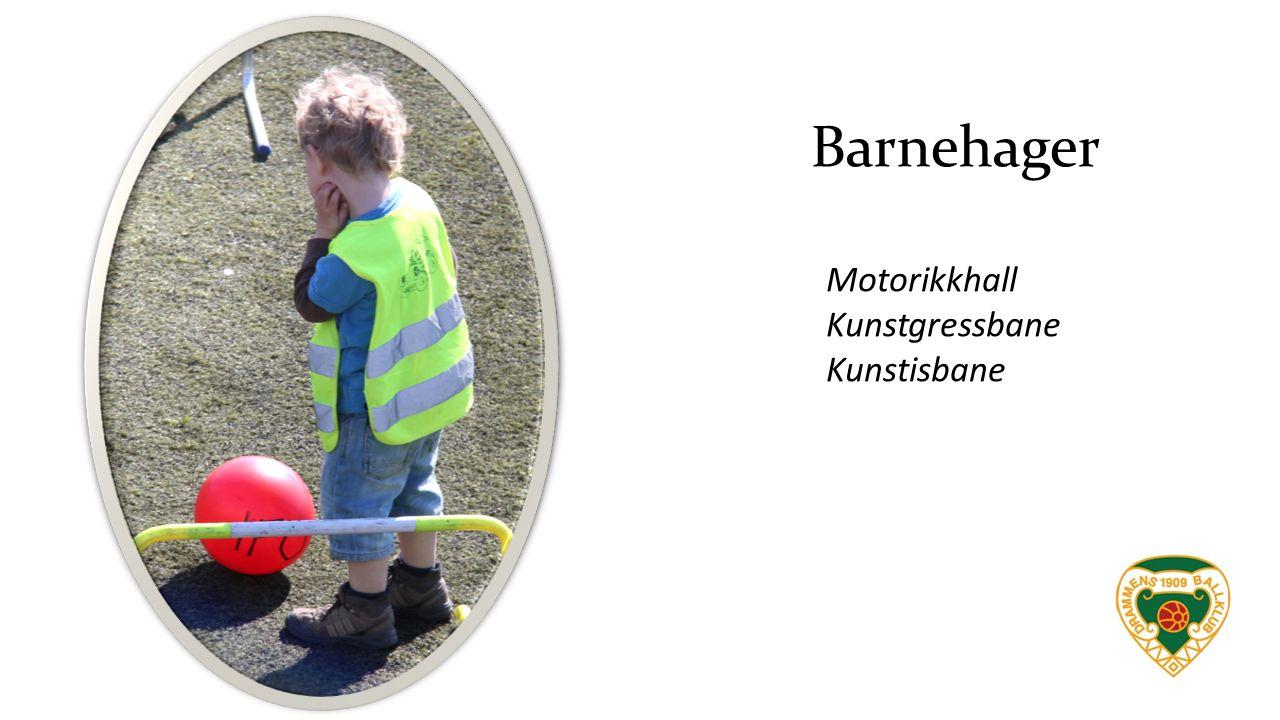 Barnehager Motorikkhall Kunstgressbane Kunstisbane