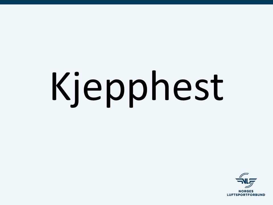 Kjepphest
