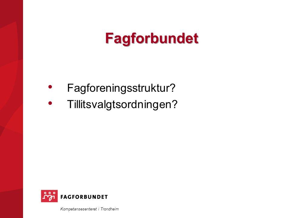 Kompetansesenteret i Trondheim Fagforbundet Fagforeningsstruktur? Tillitsvalgtsordningen?
