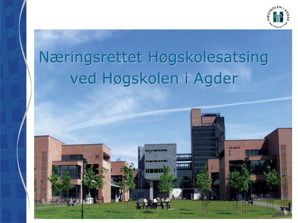 Næringsrettet Høgskolesatsing ved Høgskolen i Agder