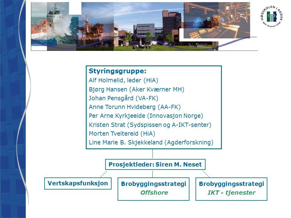 Styringsgruppe: Alf Holmelid, leder (HiA) Bjørg Hansen (Aker Kværner MH) Johan Pensgård (VA-FK) Anne Torunn Hvideberg (AA-FK) Per Arne Kyrkjeeide (Innovasjon Norge) Kristen Strat (Sydspissen og A-IKT-senter) Morten Tveitereid (HiA) Line Marie B.