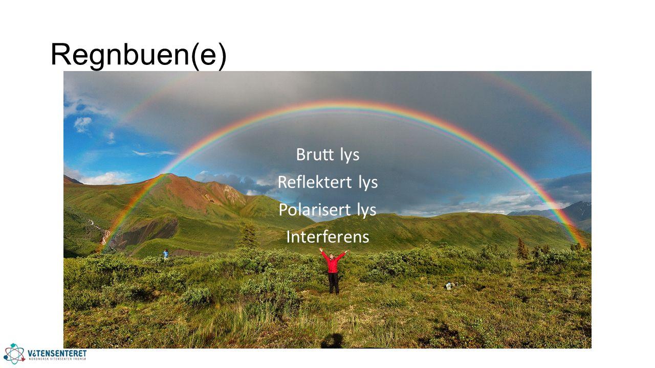 Regnbuen(e) Brutt lys Reflektert lys Polarisert lys Interferens
