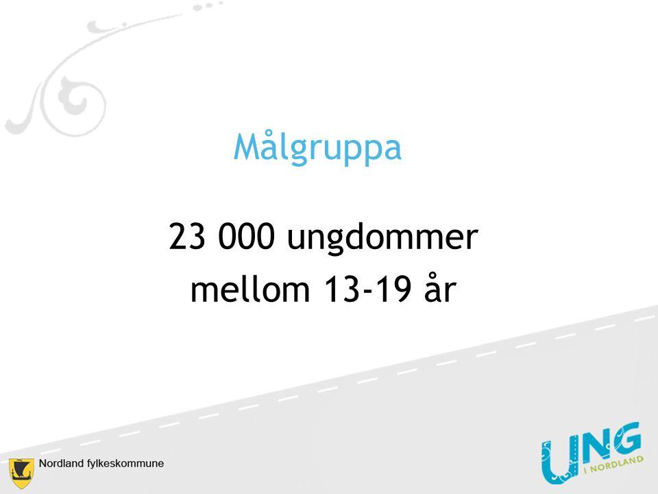 Målgruppa 23 000 ungdommer mellom 13-19 år