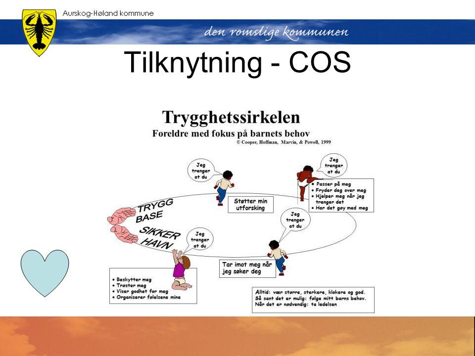 Tilknytning - COS