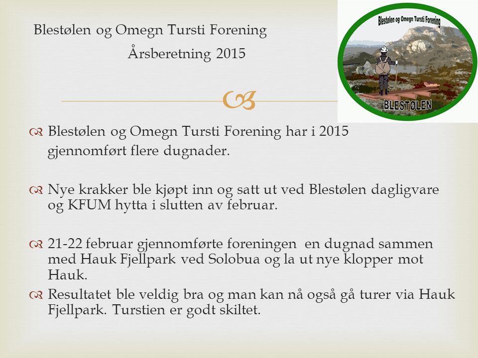  Blestølen og Omegn Tursti Forening Årsberetning 2015  Blestølen og Omegn Tursti Forening har i 2015 gjennomført flere dugnader.