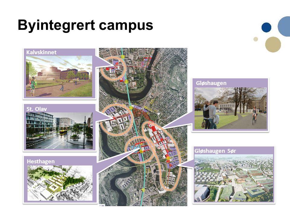 Kalvskinnet St. Olav Hesthagen Gløshaugen Gløshaugen Sør Byintegrert campus