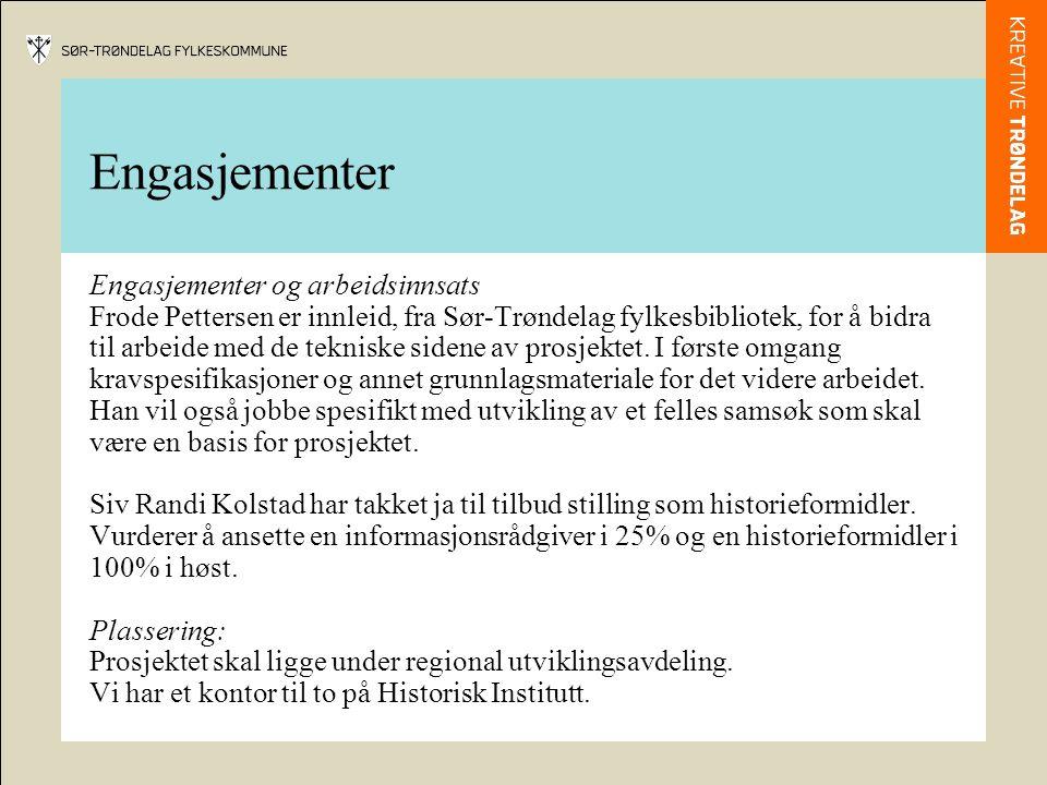 Engasjementer Engasjementer og arbeidsinnsats Frode Pettersen er innleid, fra Sør-Trøndelag fylkesbibliotek, for å bidra til arbeide med de tekniske sidene av prosjektet.