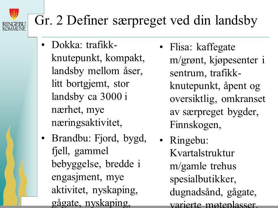 Gr. 2 Definer særpreget ved din landsby Dokka: trafikk- knutepunkt, kompakt, landsby mellom åser, litt bortgjemt, stor landsby ca 3000 i nærhet, mye n