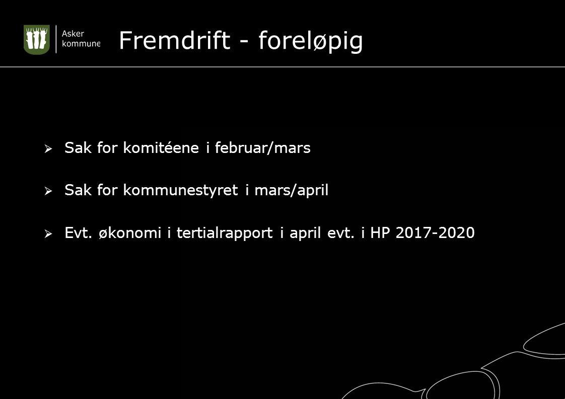 Fremdrift - foreløpig  Sak for komitéene i februar/mars  Sak for kommunestyret i mars/april  Evt.