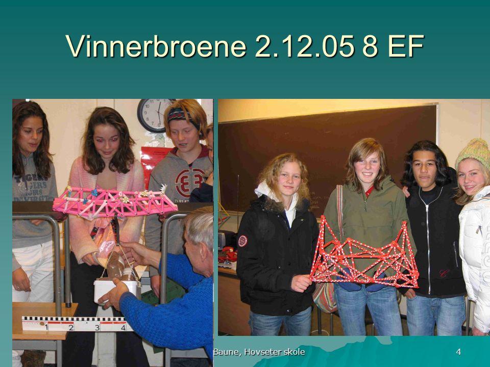 Runar Baune, Hovseter skole 5 Varmluftsballong Varmluftsballong