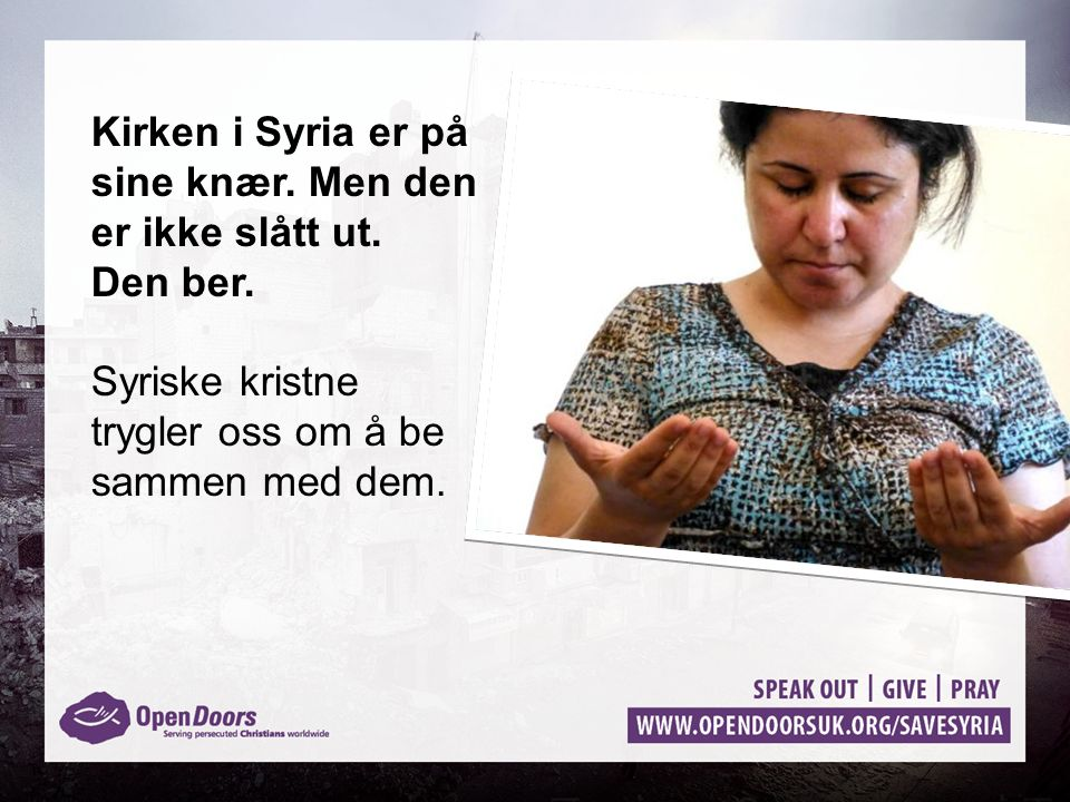 Kirken i Syria er på sine knær. Men den er ikke slått ut. Den ber. Syriske kristne trygler oss om å be sammen med dem.