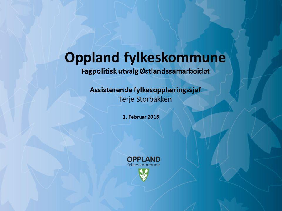 Mulighetenes Oppland Oppland fylke Innbyggere: ca 187 723 Areal: 25 192 km2 Kommuner: 26 Regioner: 6 Elever vgs: 6707 Lærlinger: 1500 Voksne vgo: 2000 Fagskolen: 1000
