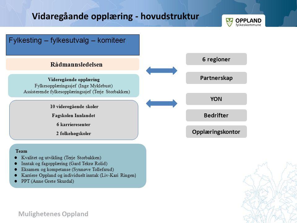 Mulighetenes Oppland OFK – Strategiutvalg fylkesrådmann leder regional utvikling ass.