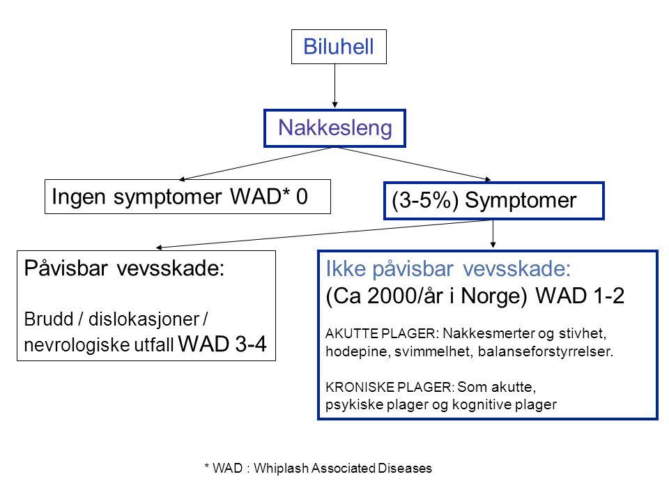 Biluhell Nakkesleng Ingen symptomer WAD* 0 (3-5%) Symptomer Påvisbar vevsskade: Brudd / dislokasjoner / nevrologiske utfall WAD 3-4 Ikke påvisbar vevsskade: (Ca 2000/år i Norge) WAD 1-2 AKUTTE PLAGER : Nakkesmerter og stivhet, hodepine, svimmelhet, balanseforstyrrelser.
