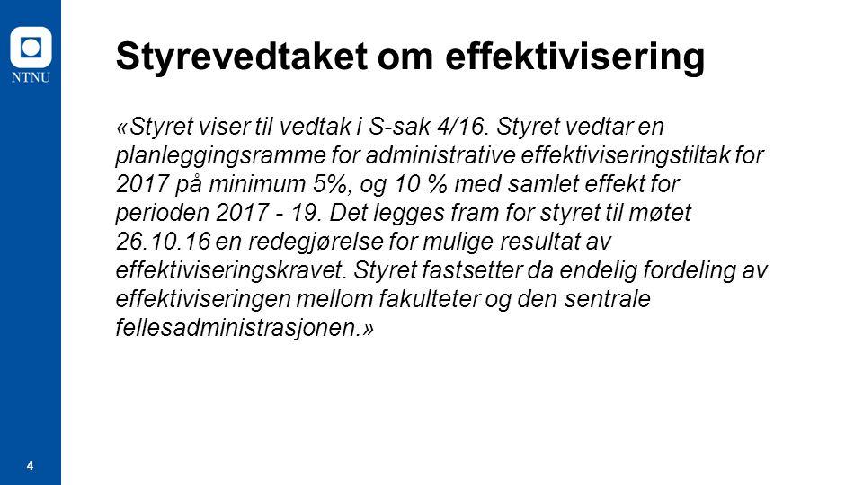 4 Styrevedtaket om effektivisering «Styret viser til vedtak i S-sak 4/16.