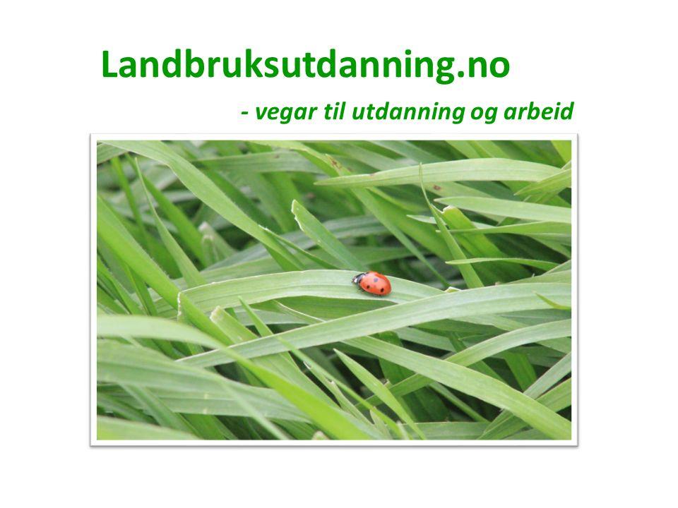 Landbruksutdanning.no På nettsida fins lenkar til: Vidaregåande skuler Fagskuleutdanning Høgskule og universitet Grunnutdanning for vaksne Jobbmuligheiter i landbruket Materiell om utdanning og arbeid i landbruket