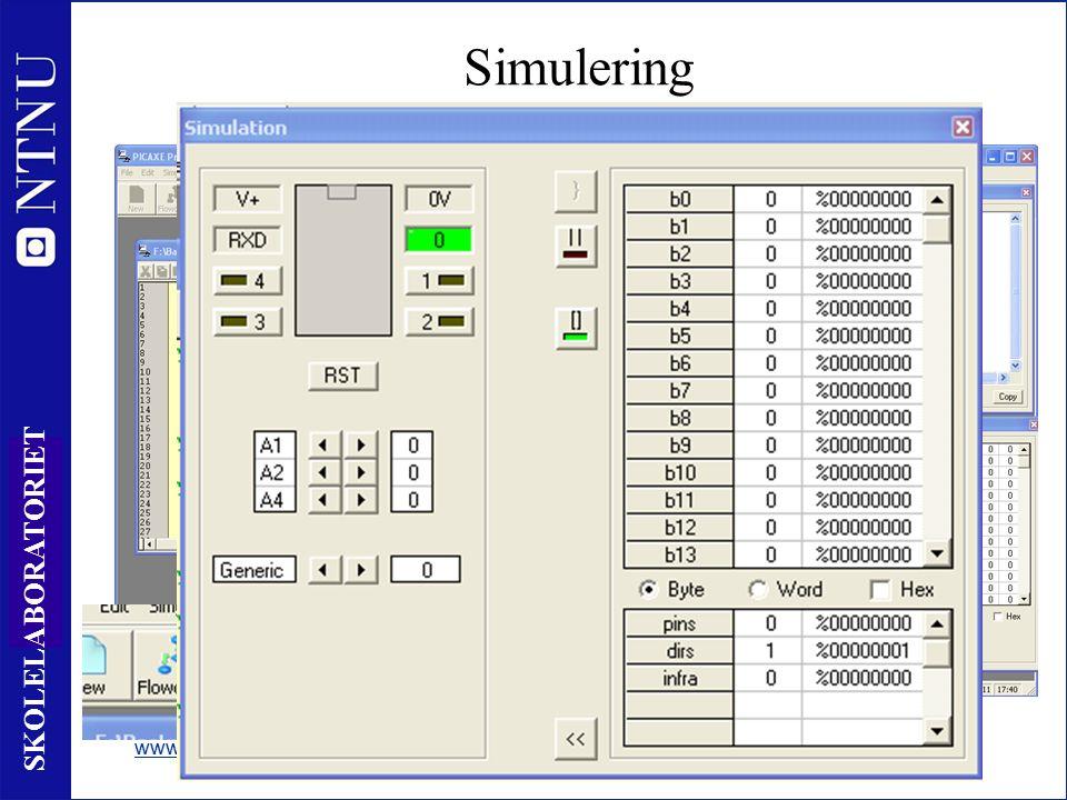 16 SKOLELABORATORIET Simulering www.skolelab.ntnu.no/