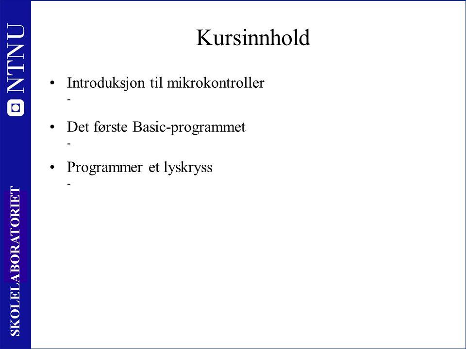 13 SKOLELABORATORIET Help-funksjonen www.skolelab.ntnu.no/
