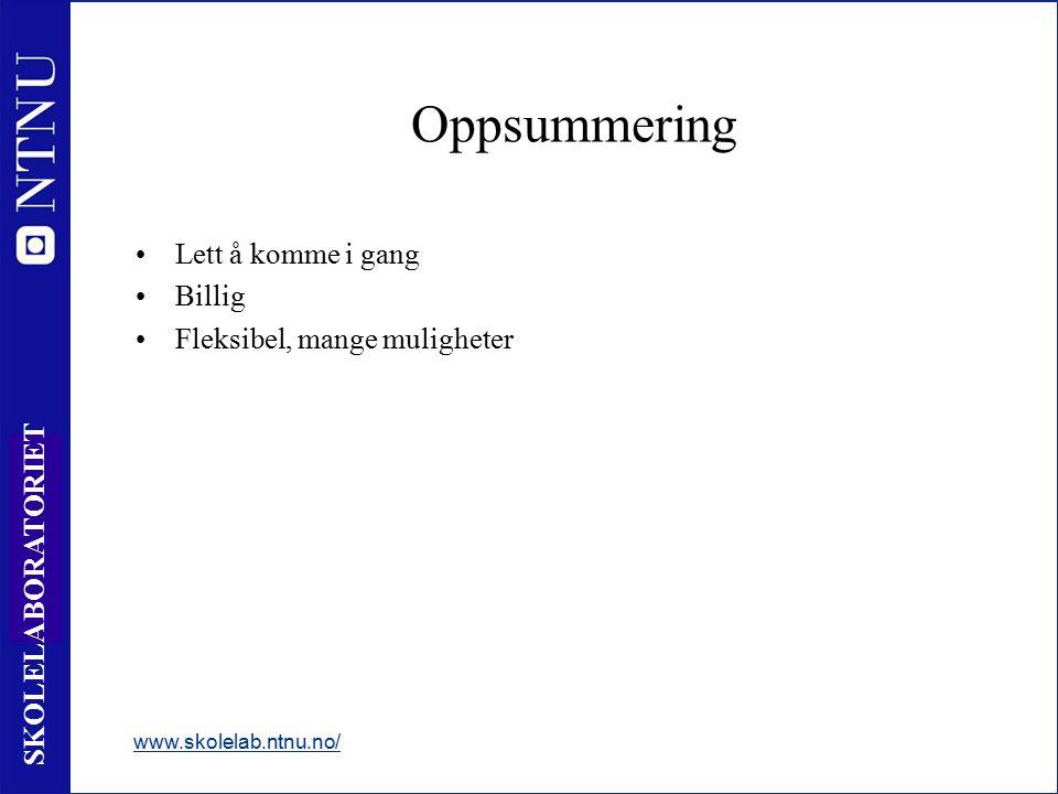 46 SKOLELABORATORIET Oppsummering Lett å komme i gang Billig Fleksibel, mange muligheter www.skolelab.ntnu.no/