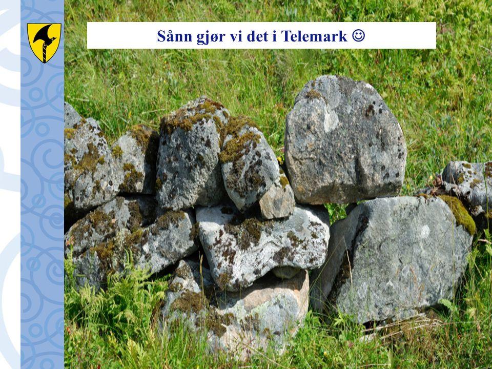 Sånn gjør vi det i Telemark