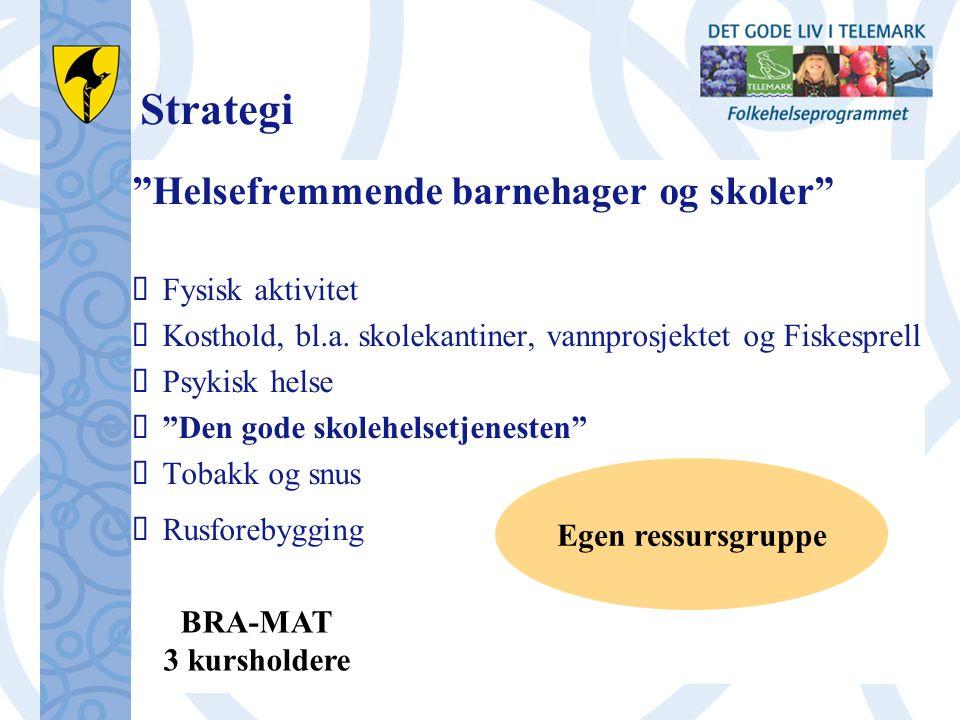 Strategi Helsefremmende barnehager og skoler  Fysisk aktivitet  Kosthold, bl.a.
