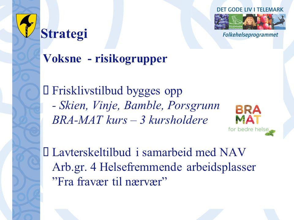 Strategi Voksne - risikogrupper  Frisklivstilbud bygges opp - Skien, Vinje, Bamble, Porsgrunn BRA-MAT kurs – 3 kursholdere  Lavterskeltilbud i samarbeid med NAV Arb.gr.