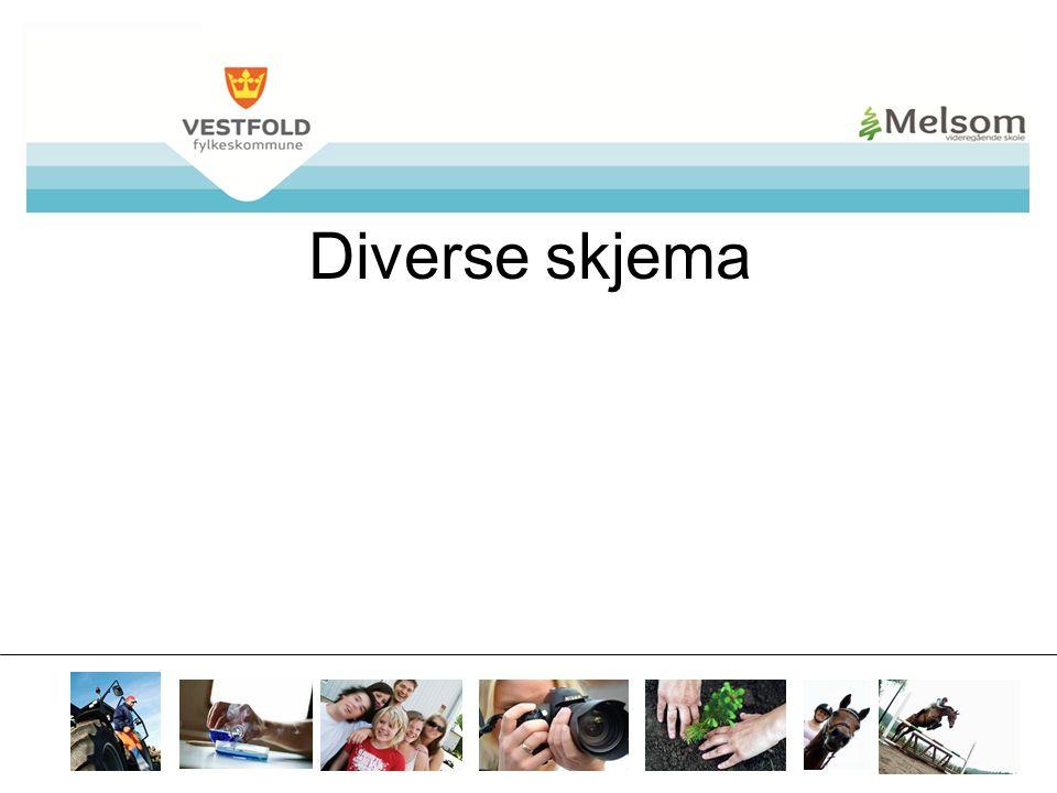 mvs.vfk.no Diverse skjema