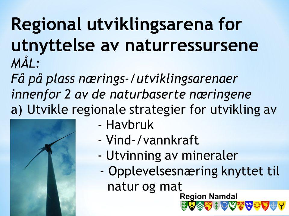 Regional utviklingsarena for utnyttelse av naturressursene MÅL: Få på plass nærings-/utviklingsarenaer innenfor 2 av de naturbaserte næringene a)Utvikle regionale strategier for utvikling av - Havbruk - Vind-/vannkraft - Utvinning av mineraler - Opplevelsesnæring knyttet til natur og mat