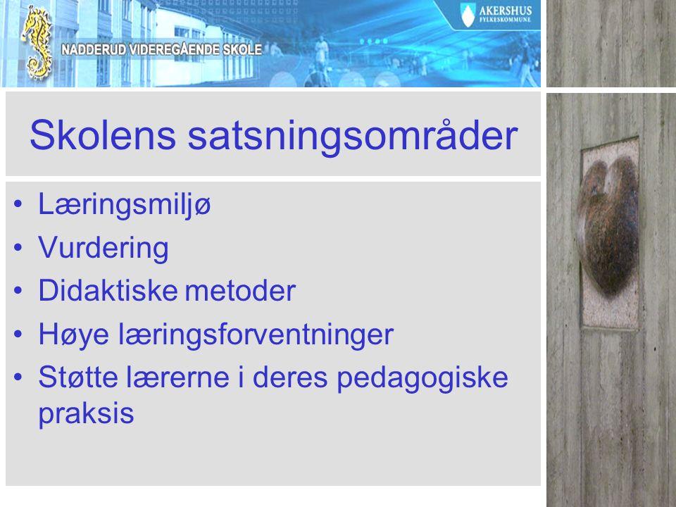 Skolens satsningsområder Læringsmiljø Vurdering Didaktiske metoder Høye læringsforventninger Støtte lærerne i deres pedagogiske praksis