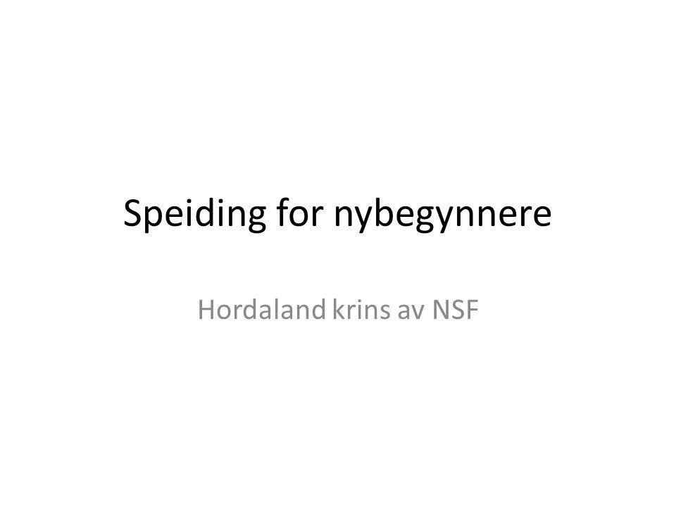 Speiding for nybegynnere Hordaland krins av NSF