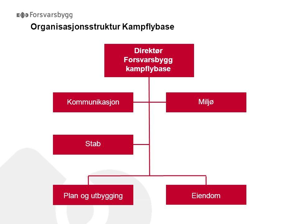 Kampflybase Plan og utbygging Tidligfase og innredning Støytiltak, administrative bygg Infrastruktur mm Operative bygg (F-35) Faglige Støttefunksjoner Organisasjonsstruktur i Plan og utbygging