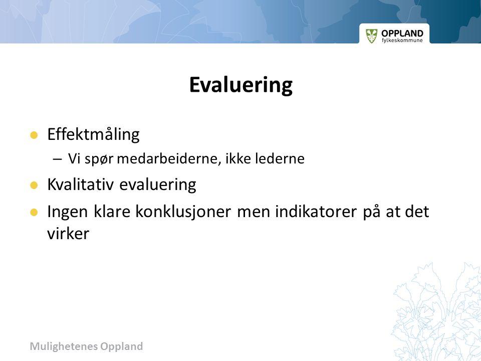 Mulighetenes Oppland Evaluering Effektmåling – Vi spør medarbeiderne, ikke lederne Kvalitativ evaluering Ingen klare konklusjoner men indikatorer på at det virker