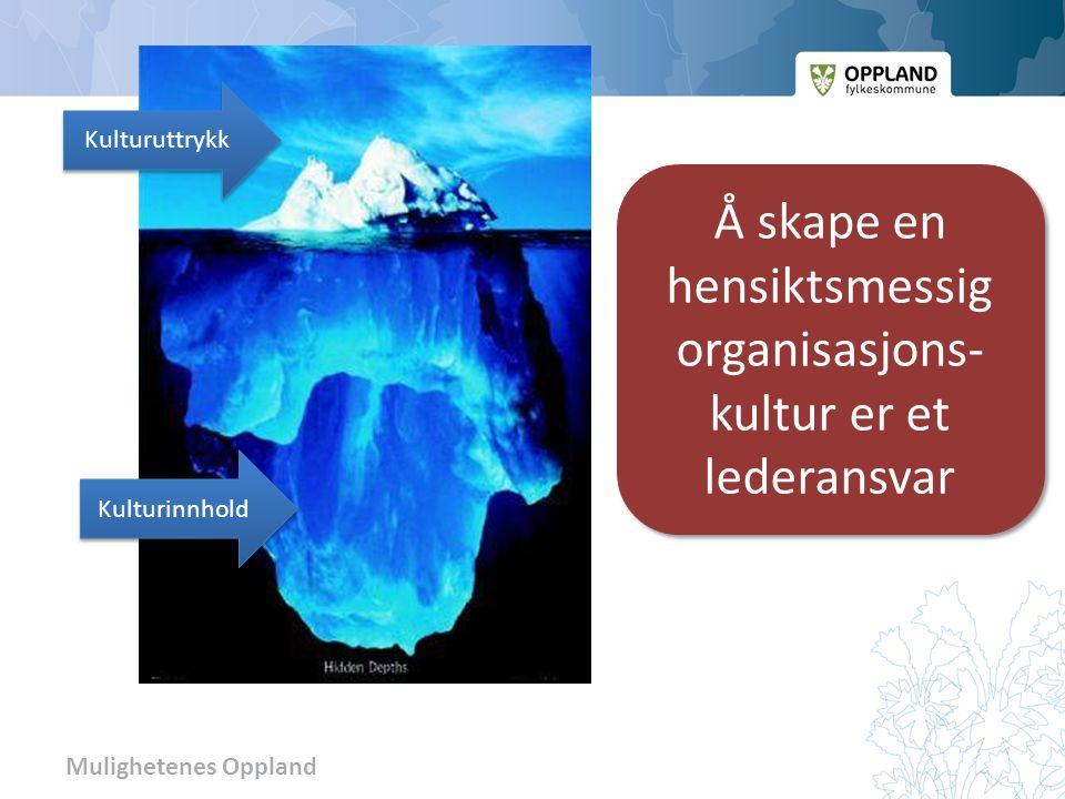 Mulighetenes Oppland Kulturuttrykk Kulturinnhold Å skape en hensiktsmessig organisasjons- kultur er et lederansvar