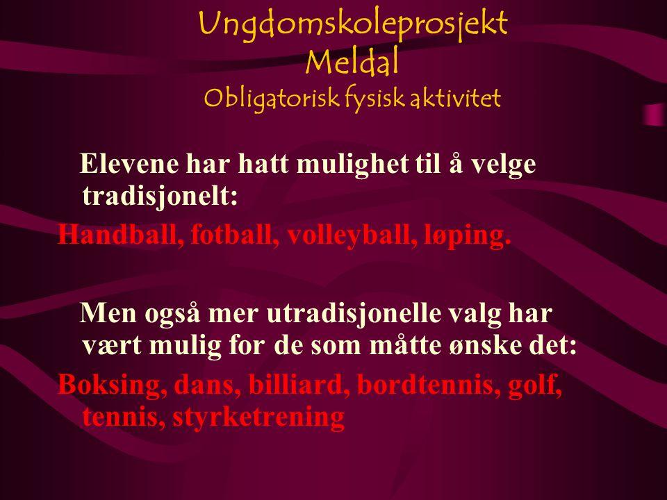 Ungdomskoleprosjekt Meldal Obligatorisk fysisk aktivitet Elevene har hatt mulighet til å velge tradisjonelt: Handball, fotball, volleyball, løping.