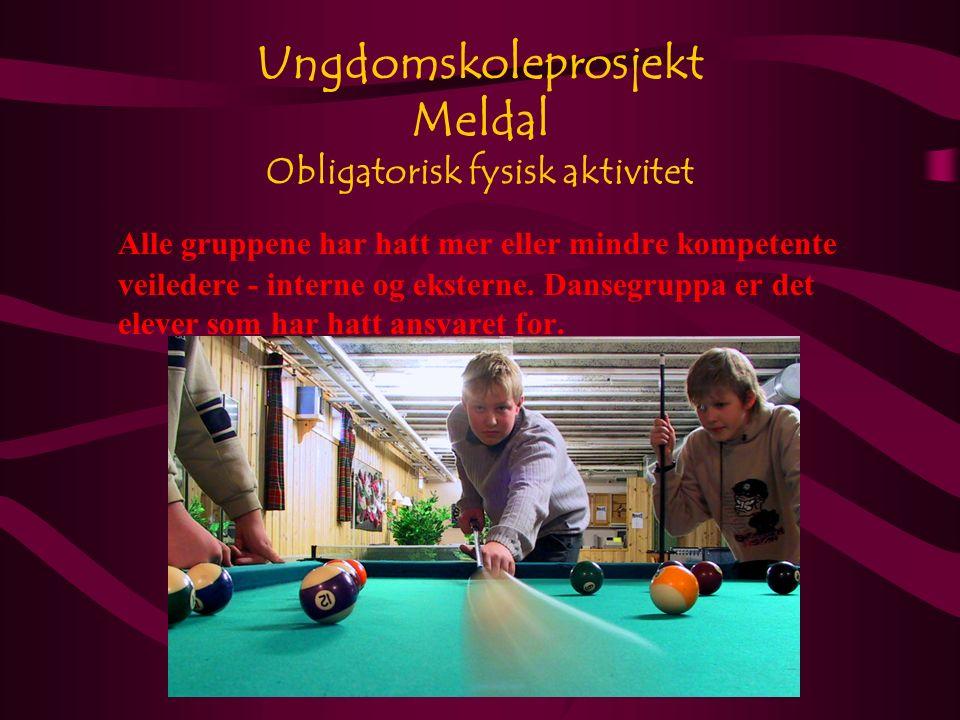 Ungdomskoleprosjekt Meldal Obligatorisk fysisk aktivitet Alle gruppene har hatt mer eller mindre kompetente veiledere - interne og eksterne.