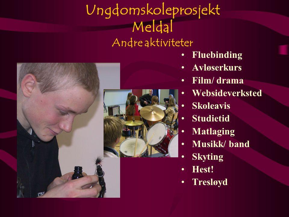 Ungdomskoleprosjekt Meldal Andre aktiviteter Fluebinding Avløserkurs Film/ drama Websideverksted Skoleavis Studietid Matlaging Musikk/ band Skyting Hest.