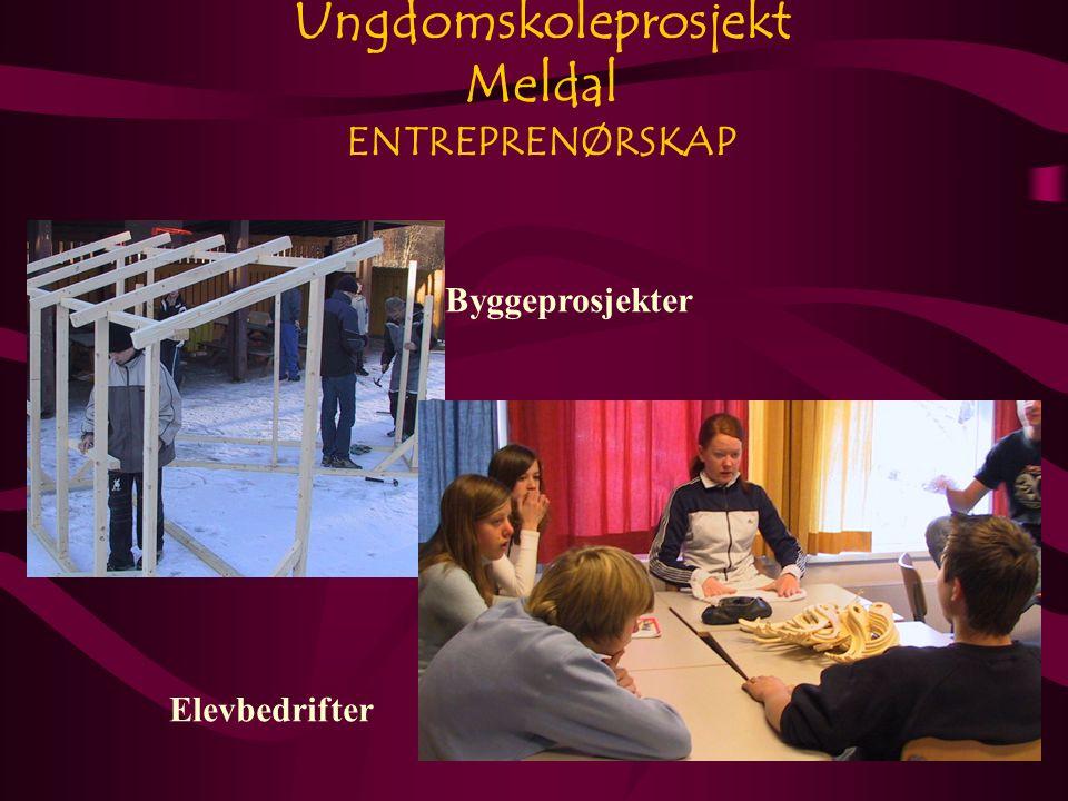 Ungdomskoleprosjekt Meldal ENTREPRENØRSKAP Byggeprosjekter Elevbedrifter
