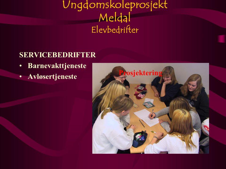 Ungdomskoleprosjekt Meldal Elevbedrifter SERVICEBEDRIFTER Barnevakttjeneste Avløsertjeneste Prosjektering