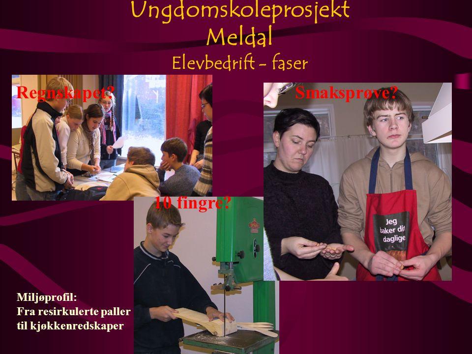 Ungdomskoleprosjekt Meldal Elevbedrift - faser Smaksprøve Regnskapet.