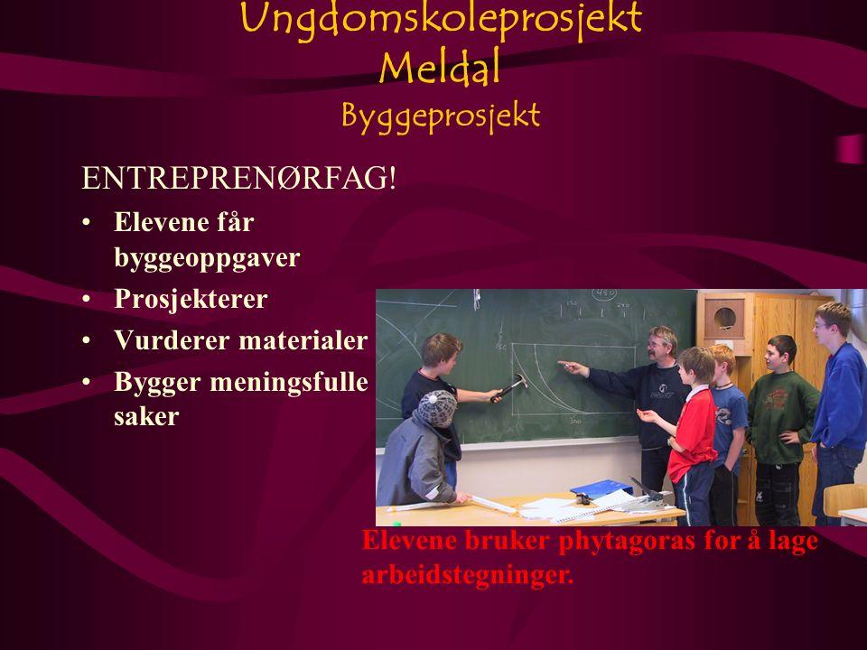 Ungdomskoleprosjekt Meldal Byggeprosjekt ENTREPRENØRFAG.