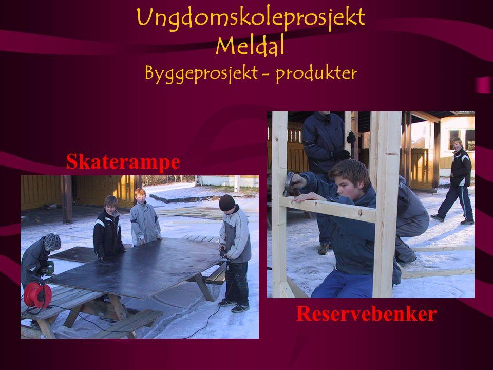 Ungdomskoleprosjekt Meldal Byggeprosjekt - produkter Skaterampe Reservebenker