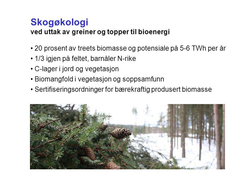 Skogøkologi ved uttak av greiner og topper til bioenergi 20 prosent av treets biomasse og potensiale på 5-6 TWh per år 1/3 igjen på feltet, barnåler N-rike C-lager i jord og vegetasjon Biomangfold i vegetasjon og soppsamfunn Sertifiseringsordninger for bærekraftig produsert biomasse