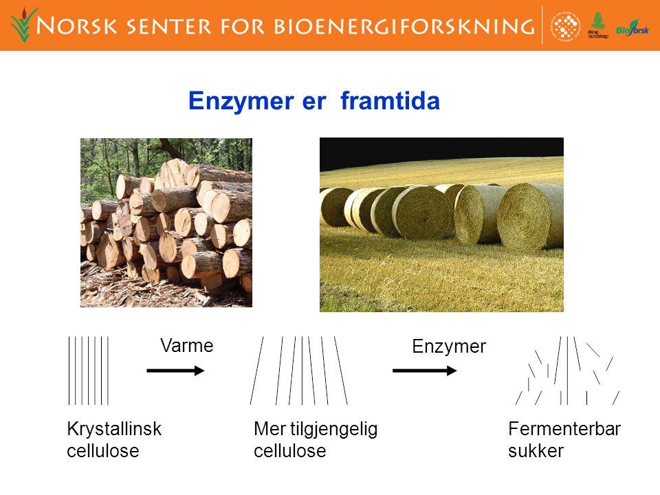 Krystallinsk cellulose Mer tilgjengelig cellulose Fermenterbar sukker Varme Enzymer Enzymer er framtida